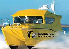 Photo of the yellow Bumblebee Boat
