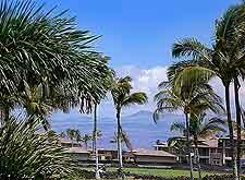 Hawaii Big Island Coastal view