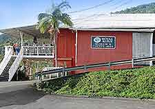 Photograph of the Kona Coffee Living History Farm