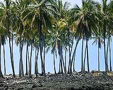 View of Big Island's Kamakahonu Beach