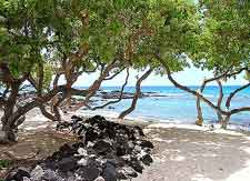 Picture taken at the Kikaua Point Beach