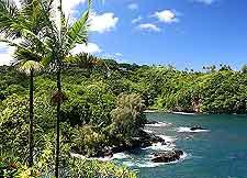Hawaii Big Island coastal photo