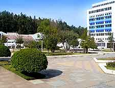 Picture of central plaza