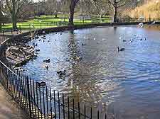 Picture of Ipswich's Christchurch Park