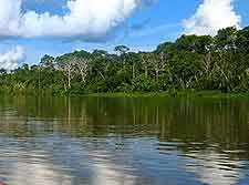 Amazon River photo