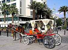 Photo of horse and carriage ride, awaiting passengers