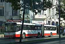 Image of local buses