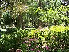 Jacksonville Parks And Gardens Jacksonville Florida Fl
