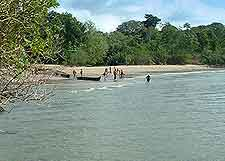 Different picture of the Ujung Kulon National Park