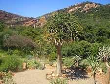 Photo taken at the Botanical Gardens