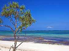 Further picture of Diani Beach