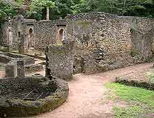 Image of the famous Gedi (Gede) ruins