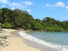 Picture of San San Beach, Port Antonio
