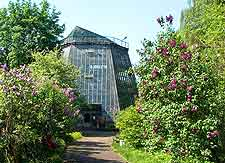 Picture of the beautiful Botanical Gardens