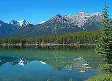 Photo of the breaktaking Icefields Parkway