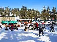 Picture of seasonal skiers