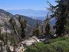 Tahoe Rim Trail image