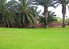 Image of a Lanzarote golf course