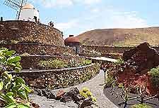 Lanzarote's Garden of Cactus (Jardin de los Cactus) image