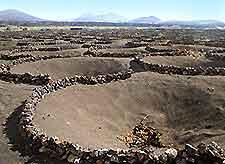 Photo of the volcanic soil of Lanzarote's Le Geria area