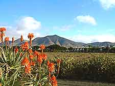 View of the Lanzarote Mountains