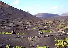 Lanzarote's volcanic scenery