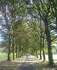 Scenic image of Leeds's Hyde Park