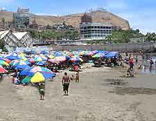 Summer beach picture