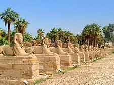 Close-up photo of the Avenue of the Sphinxes