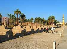 Picture showing the Avenue of the Sphinxes