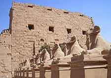 Photo of the Temple of Karnak