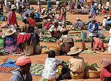 Antananarivo market view