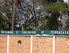Tsimbazaza Zoo and Botanical Garden picture