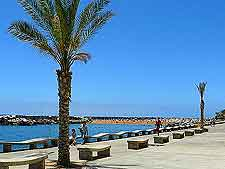 Picture of Calheta Beach