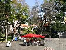 Madeira+funchal+restaurants