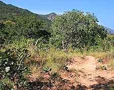 Nyika National Park photograph