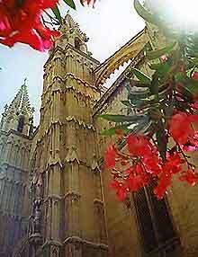 Mallorca Churches