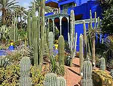 Picture of the Jardin Majorelle and Museum of Islamic Art