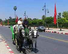 Photo of road, shared with horse and carriages