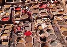 Picture of a local open-air tannery, where hides are tanned