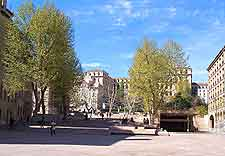 Picture of trees around central square