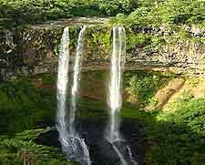 Tamarind Falls image