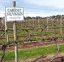 Melbourne Vineyards and Wines