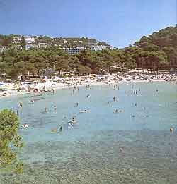 Menorca Information and