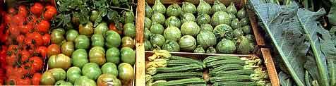 Milan market produce photo
