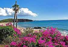 Seasonal photo taken at the Kepuhi Beach