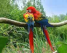 Photo taken at Champrepus Zoo (Zoo de Champrepus)