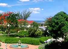 Photo taken in the gardens of Montego Bay's famous Sandals Resort