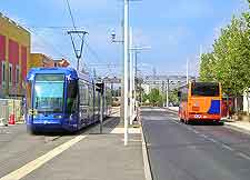 Photo of tram and bus