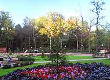 Picture of the city's popular Sokolniki Park